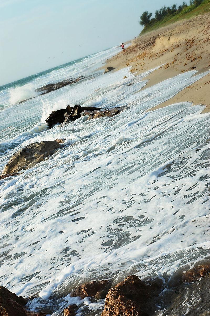 Ocean15_sm