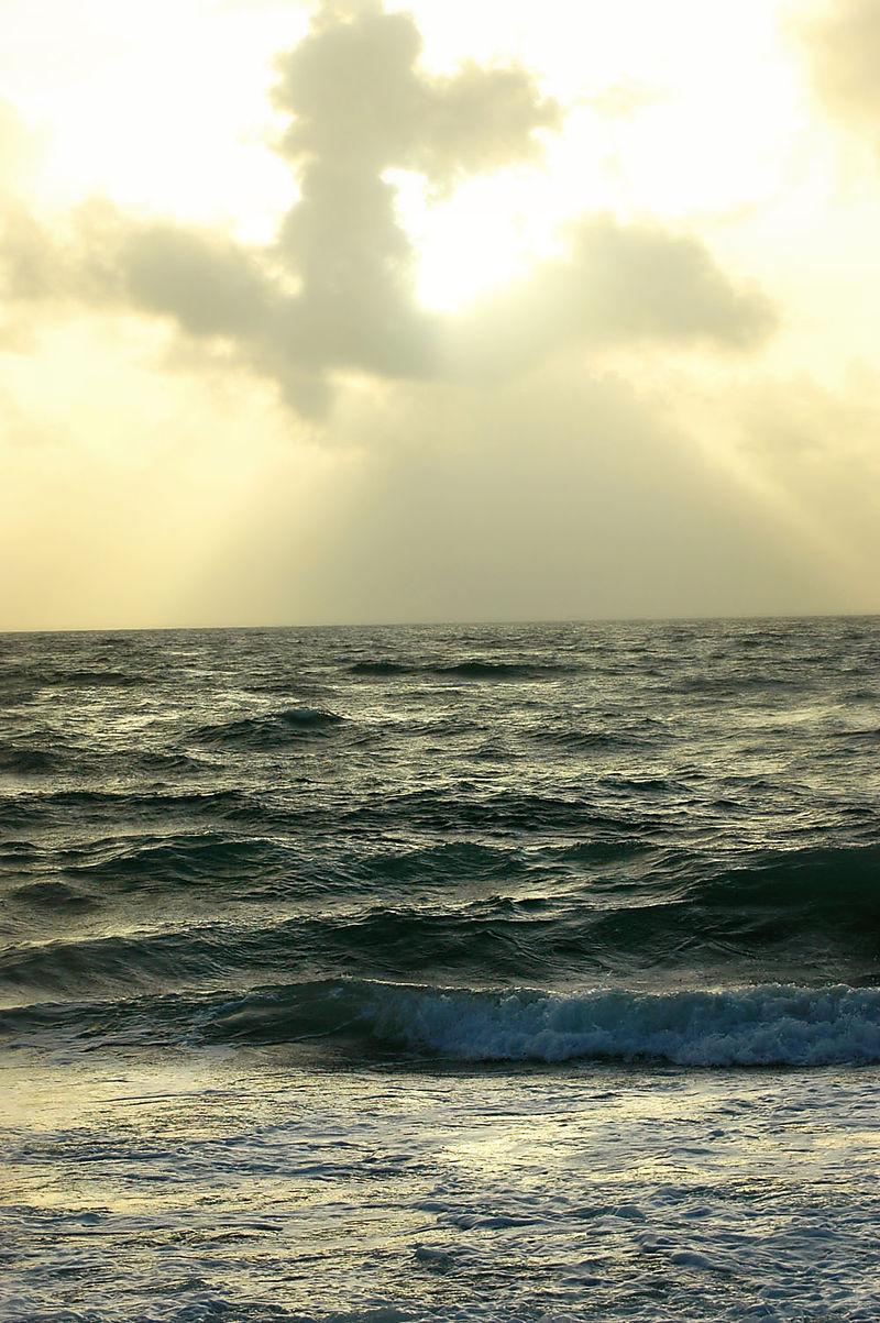 Ocean16_sm
