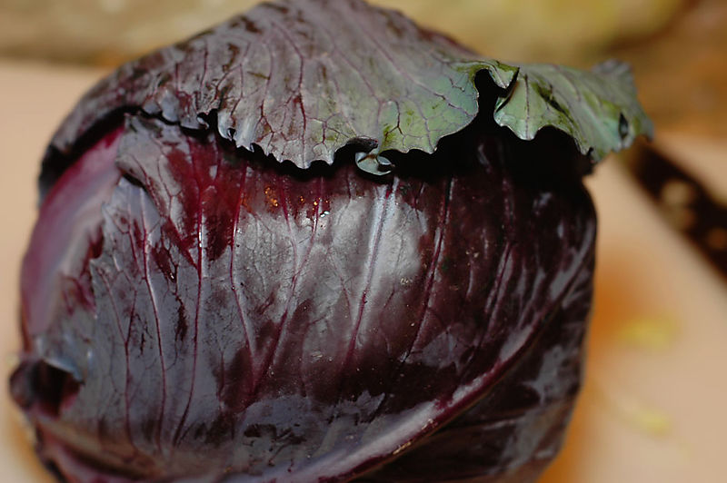 Redcabbage_sm