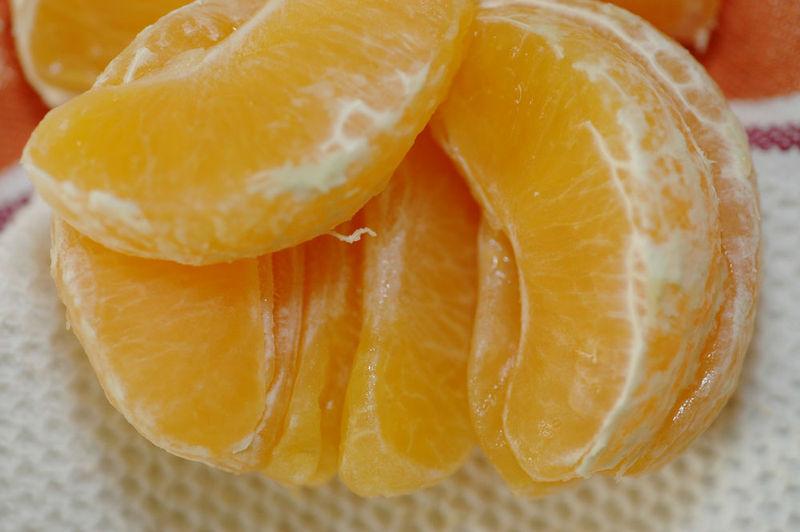 Orange005_sm