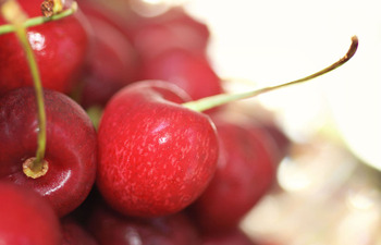 Cherry1_small