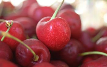 Cherry2_small