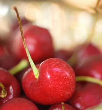 Cherry3_small
