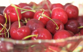 Cherry4_small