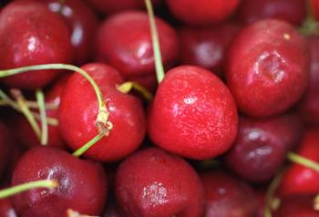 Cherry5_small